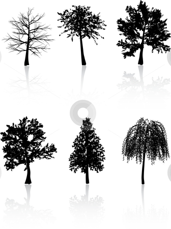 Tree silhouettes  stock vector clipart, Various detailed tree silhouettes by Kirsty Pargeter