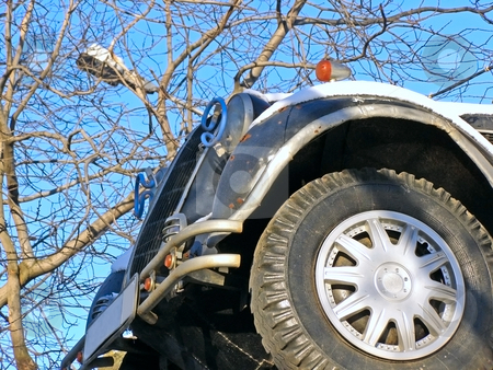 Wheel stock photo, Car wheel against the tree and blue sky by Sergej Razvodovskij