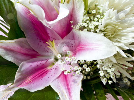 Flower bouquet stock photo, Flower bouquet with pink lily and white chrysanthemum by Sergej Razvodovskij
