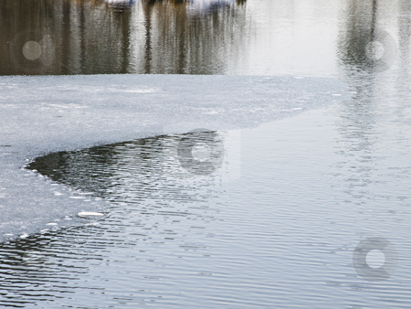Water with ice stock photo, Lake water with ice and reflection of the trees by Sergej Razvodovskij