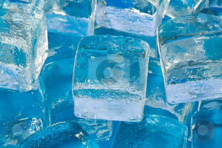 Ice cubes stock photo, A stack of ice cubes gently melting by Norma Cornes