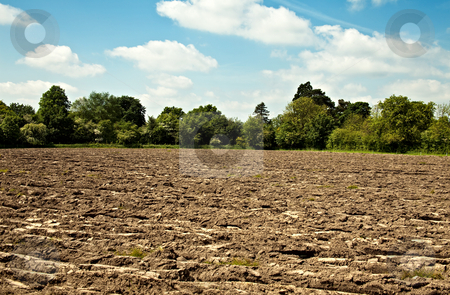 Ploughed field stock photo, A rough ploughed field with a border of trees by Norma Cornes