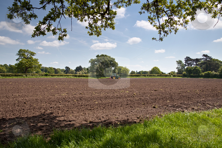 Harrowing stock photo, A ploughed field seen from beneath oak trees with a tractor pulling a harrow on the far side of the field by Norma Cornes