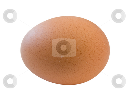 Isolated egg stock photo, Single brown isolated egg against the white background by Sergej Razvodovskij