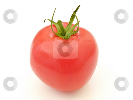 Tomato stock photo, Single red tomato against the white background by Sergej Razvodovskij