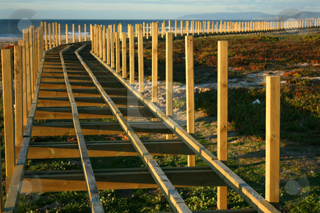 Beach track stock photo, Wood track around a beach by Marc Torrell