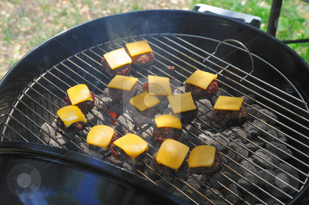 Barbeque Mini Cheese Burgers stock photo, Several small hamburgers on the grill over hot charcoal covered with chedder cheese by Lynn Bendickson