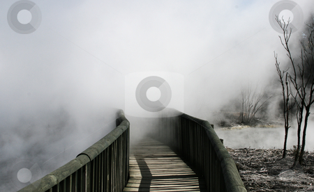 Steam from hot lake stock photo, Steam from hot lake gliding over bridge at Kuirau Park, Rotorua, New Zeland by David Schmidt