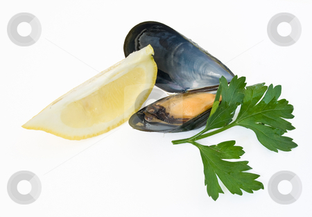 Mussel with lemon and parsley stock photo, Close up of fresh boiled mussel with parsley and lemon  isolated on white background by ANTONIO SCARPI