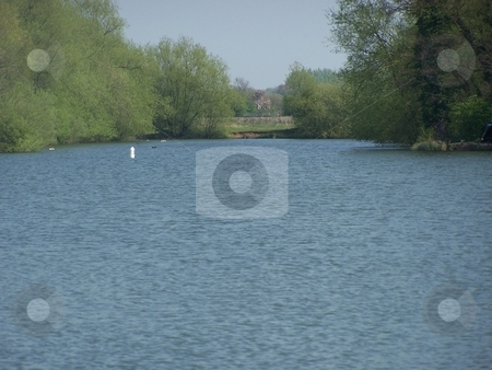 The pond stock photo, Clear waterpond in leicestershire by Lee Measures