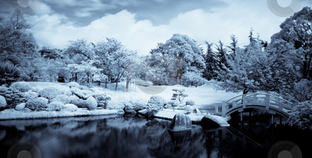 Japanese garden stock photo, Infrared panoramic  landscape of a japanese garden with a lake and bridge selenium toned by Laurent Dambies