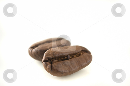 Two coffee beans in white background. stock photo, Two coffee beans in white background, close up. by Pablo Caridad