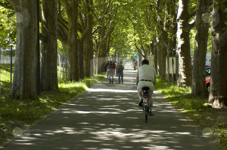 Alley stock photo, Alley with trees, people and biker by Andreas Brenner