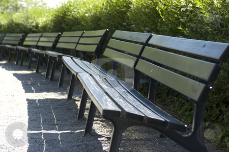Wooden park benches stock photo, Perspective view of a row of park benches by Andreas Brenner
