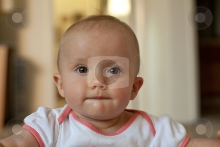 Cute Baby Girl stock photo, Portrait of cute little caucasian baby girl. by Mariusz Jurgielewicz