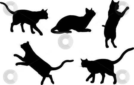 Cats stock photo, Silhouettes of cats in various poses by Kirsty Pargeter