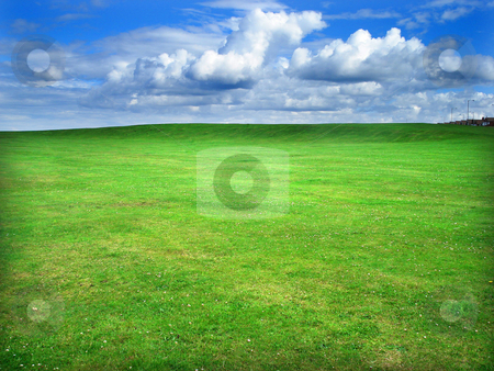 Green field stock photo, Greem grass field and cloudy blue sky by Marc Torrell