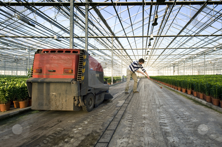 Cleaning a glasshouse stock photo, A man sweeping the concrete floor of a huge glasshouse by Corepics VOF