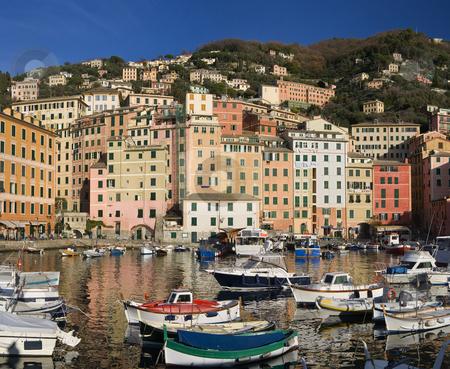 Little port of Camogli stock photo, The characteristic houses and the marina of Camogli, famous small town near Genoa, Italy by ANTONIO SCARPI