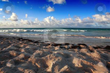 Beach at Punta Cana stock photo, Beach at Punta Cana, Dominican Republic by Tom P.