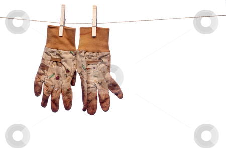A horizontal image of dirty garden work gloves hanging on a clot stock photo, A horizontal image of dirty garden work gloves hanging on a clothes line by Vince Clements