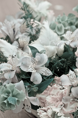 Bouquet stock photo, Nature series:  flower composition  on the delicate color by Gennady Kravetsky