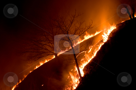 Fire stock photo, Fire series: old dry grass fired in the night by Gennady Kravetsky