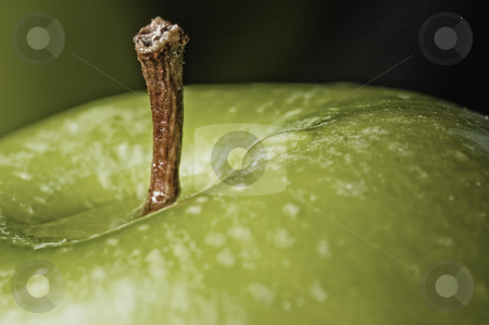 Apple stock photo, Close up shot of a green apple by Vlad Podkhlebnik