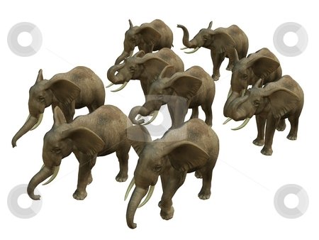 HERD OF WALKING ELPHANTS  stock photo, 3D rendered isolated herd of walking elephant. by Patrik Ruzic