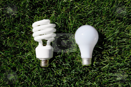 Energy Saving Light Bulb and Incandescent Bulb stock photo, Energy Saving Light Bulb and Incandescent Bulb laying on green grass by Bryan Mullennix