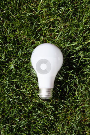 Incandescent light bulb stock photo, Incandescent light bulb laying on green grass by Bryan Mullennix