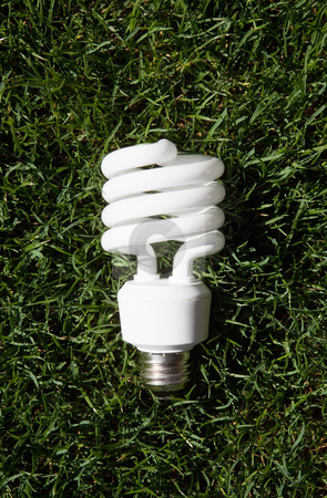 Energy Saving Light Bulb stock photo, Energy saving light bulb in green grass by Bryan Mullennix