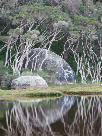 Moon Rock stock photo, Tidal River, Wilsons Promontory National Park, Victoria Australia by Robyn Butler