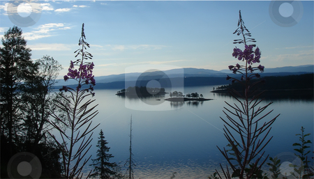 Magic sunset  stock photo, Zen like tranquil scene - magic moments in nature by Stelian Ion