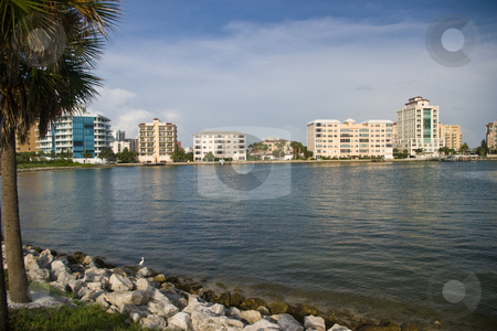 Sarasota Water Front stock photo, Condos on the waterfront in Sarasota, FL taken from the John Ringling Causway. by Steve Carroll
