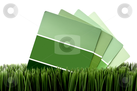 Green paint chip samples on green grass with a white background stock photo, Horizontal image of green paint chip samples on green grass with a white background by Vince Clements