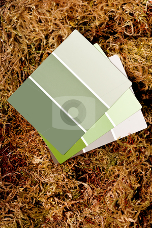 Image of color paint chips on a moss background stock photo, Image of color paint chips on a moss background by Vince Clements