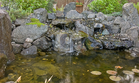 Small Garden Pond  stock photo, This is a cute little garden pond complete with lily pads and a small rock waterfall. by Valerie Garner