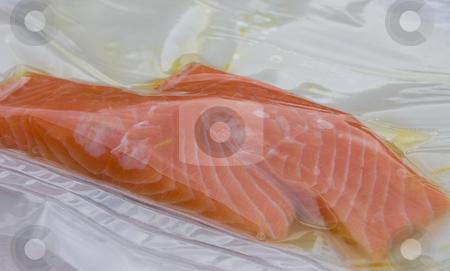 Salmon in vacuum pack stock photo, 45 degree shot of 2 salmon fillet in vacuum pack marinating in a little oil by Christian Rhein