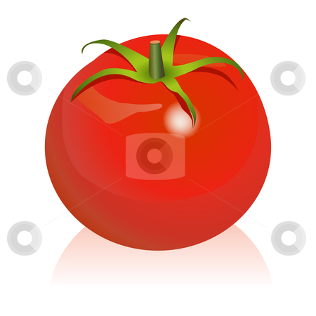 Tomato stock vector clipart, Illustration of tomato by Laurent Renault