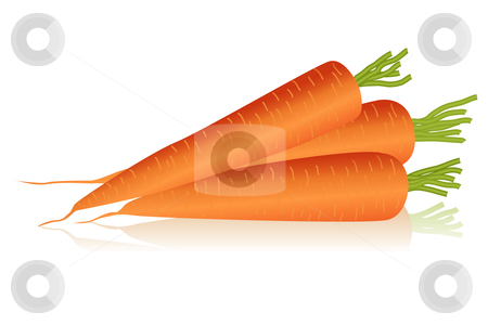 Carrots stock vector clipart, Illustration of carrots by Laurent Renault