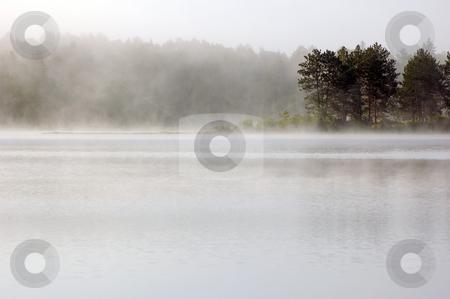 Fog stock photo, Fog above lake in the morning. Samuel de Champlain Prov. Park by Pavel Cheiko