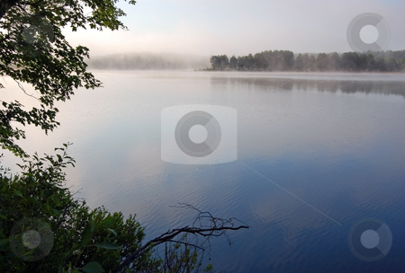 Fog stock photo, Strong fog above lake in the morning by Pavel Cheiko
