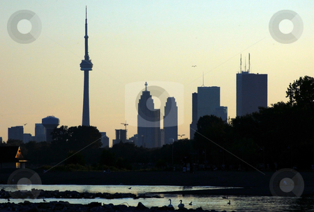 CN Tower stock photo, CN Tower. Toronto skyline from Ontario lake by Pavel Cheiko