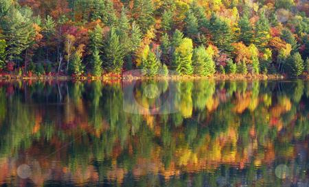 Lake stock photo, Sunny day on Lake in Killarney Park by Pavel Cheiko