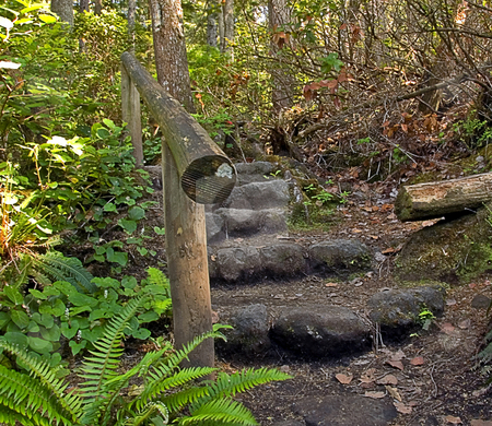 Steps on Wooded Mountain Path stock photo, Beautiful path in the mountains with rustic stone steps and railing. by Valerie Garner