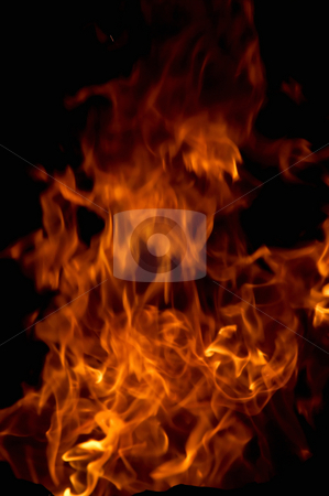 Flame stock photo, Burning of a tree it is very bad, but beautiful by Sergey Goruppa