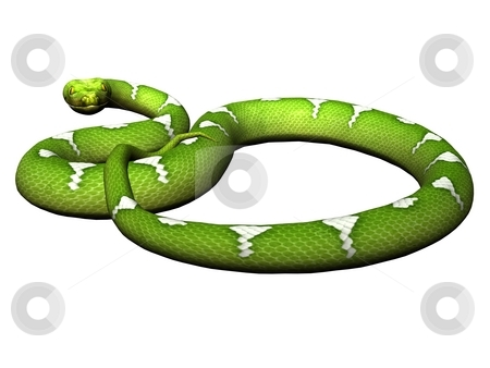 Defending green python stock photo, Green python rendered on white background by Patrik Ruzic