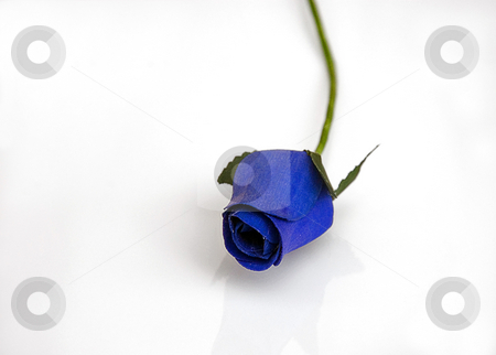 Wooden Blue Rose Isolated on White stock photo, This handmade rose bud is bright blue colored and isolated on a white background. by Valerie Garner