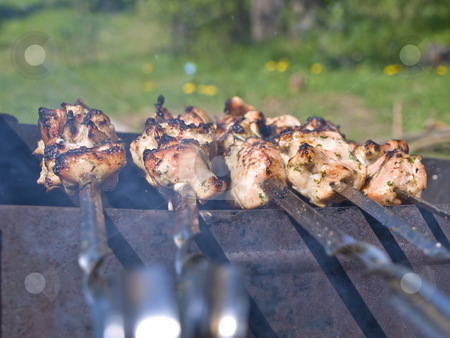 Shish kebab stock photo, Shish kebab preparing at the chargrill outdoor by Sergej Razvodovskij